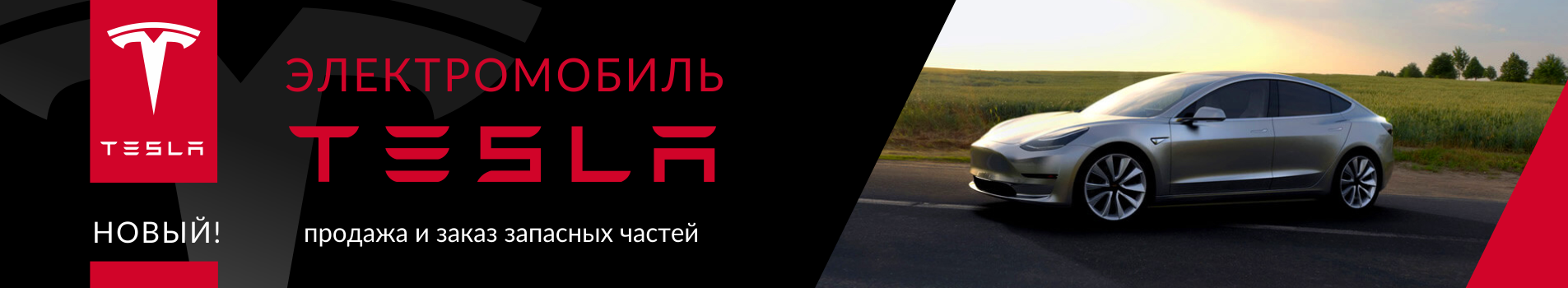 tesla_1905x350RUS_c